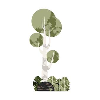 Una parte della foresta