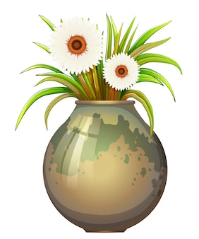 Una pianta in fiore in un grande vaso