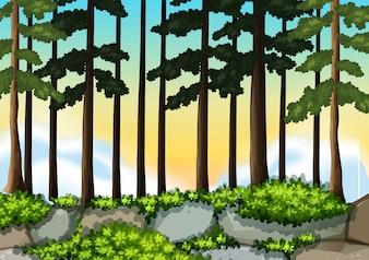 Una priorità bassa di legno di natura
