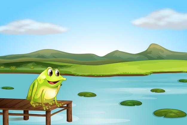 Una rana sopra il ponte di legno