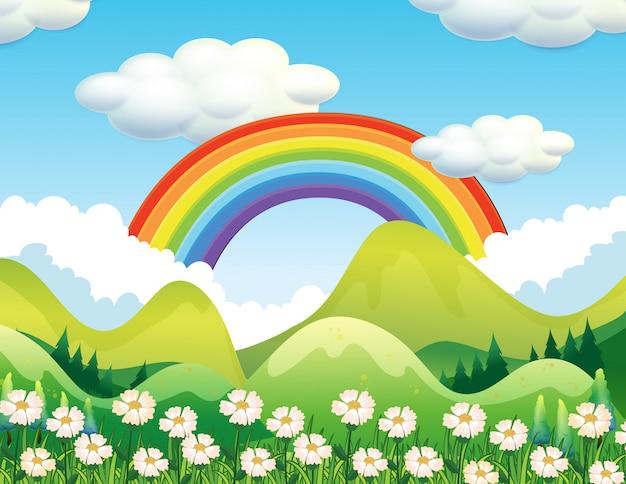 Una scena di foresta e arcobaleno