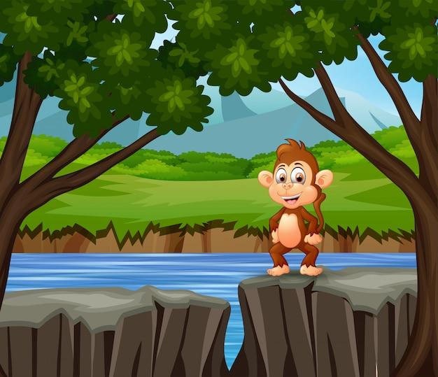 Una scimmia in piedi sulla scogliera