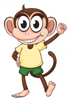 Una scimmia