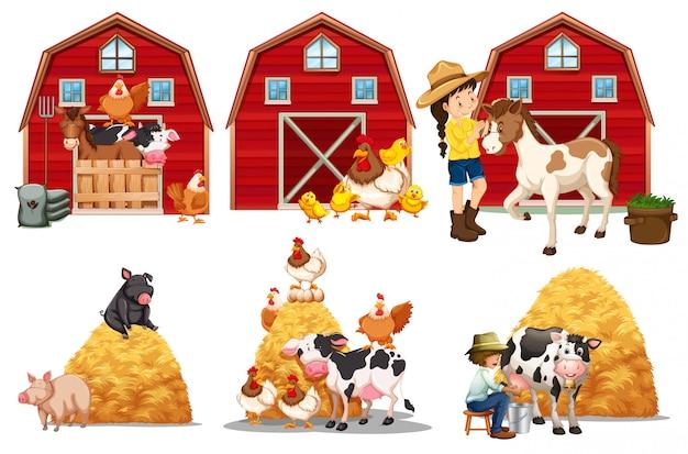 Una serie di elementi della fattoria