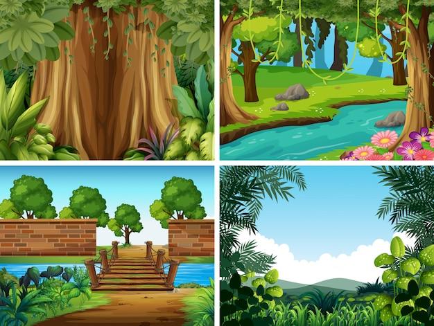 Una serie di paesaggi naturali