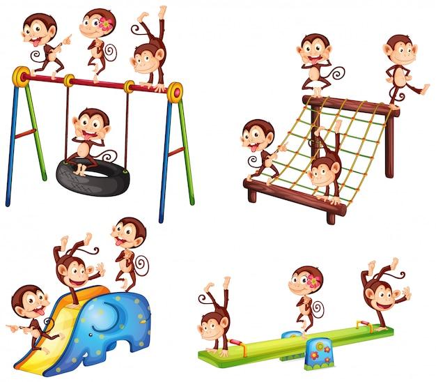 Una serie di scimmie che giocano al parco giochi