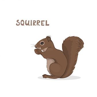 Uno scoiattolo carino cartone animato, isolato. alfabeto animale.