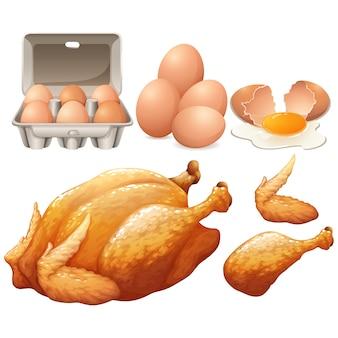 Uova e progettazione di pollo