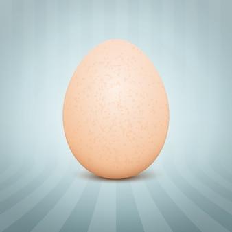 Uovo realistico