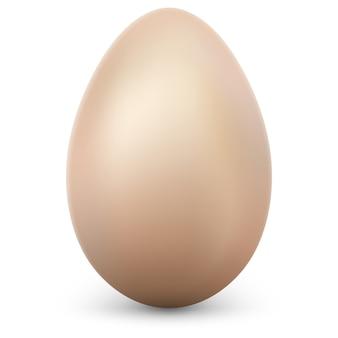 Uovo su sfondo bianco. e include anche