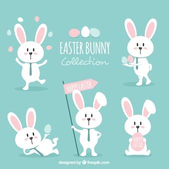 Vari coniglietti belle di pasqua