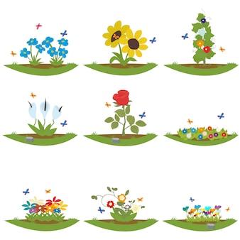 Varie piante e fiori da giardino crescono sull'insieme del collage del mucchio della composta della terra