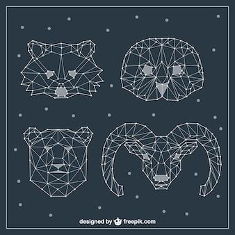 Varietà di facce di animali poligonali