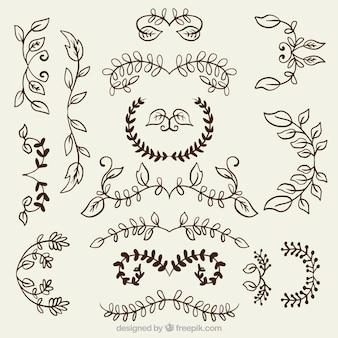 Varietà di ornamenti floreali