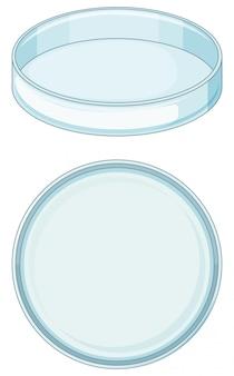 Vassoio di vetro vuoto utilizzato nel laboratorio di scienza