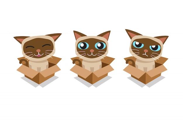 Vector cartoon gatto siamese