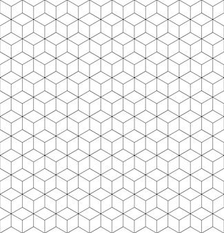 Vector la struttura di griglia del modello geometrico con le linee.