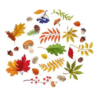 Vector le foglie di autunno, i funghi di zucca, le bacche della foresta, il modello dei funghi su bianco.