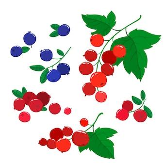 Vector set cartoon mirtilli rossi e mirtilli con foglie verdi isolati su un ramo di bacche bianche e luminose.