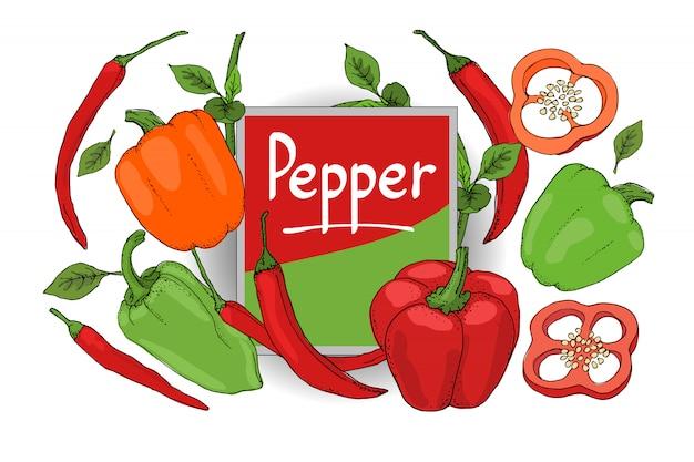 Vector set con pepe rosso, verde, arancione. peperone fresco isolato, paprika, peperoncino con steli, foglie, semi, interi e affettati. raccolto estivo