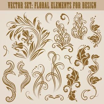 Vector set di elementi floreali