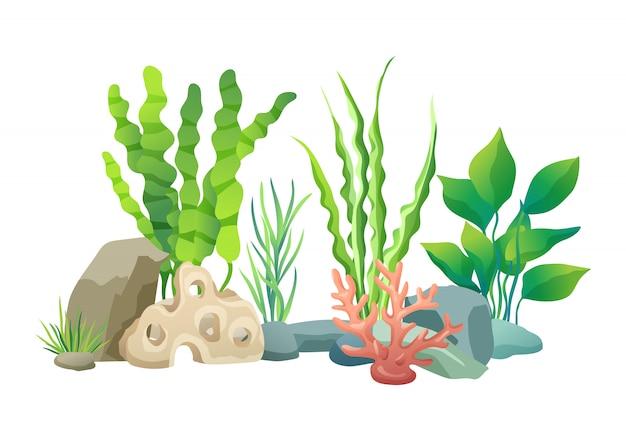 Vegetazione dell'illustrazione del mare profondo