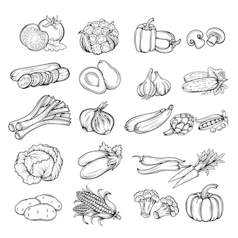 Verdura disegnata a mano