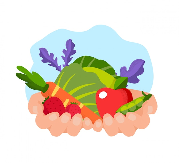 Verdure e frutta nelle mani al bachground bianco