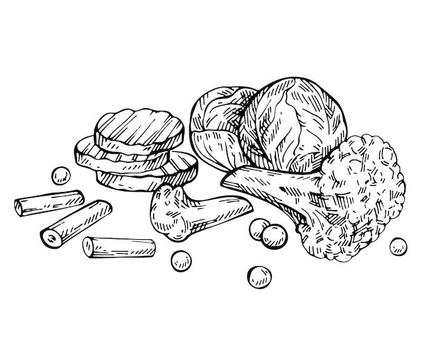 Verdure miste congelate disegnate a mano con piselli, broccoli, cavolfiore, piselli, cavoletti di bruxelles e carote. schizzo mix di verdure