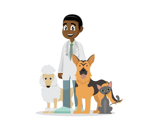 Veterinaria e animali domestici.