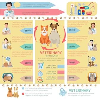 Veterinaria modello infografica