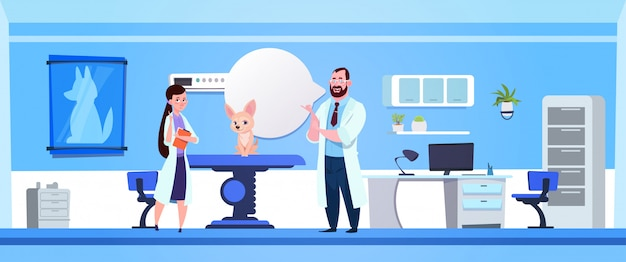 Veterinario che esamina cane nel concetto della medicina veterinaria dell'ufficio della clinica
