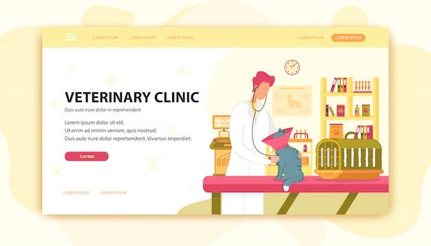 Veterinario e cat on clinic examination table.