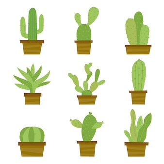 Vettore del fumetto del formicolio del fiore del vaso del fiore delle piante di cactus