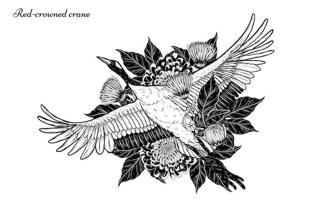 Vettore della gru rosso-incoronato che vola a mano disegno