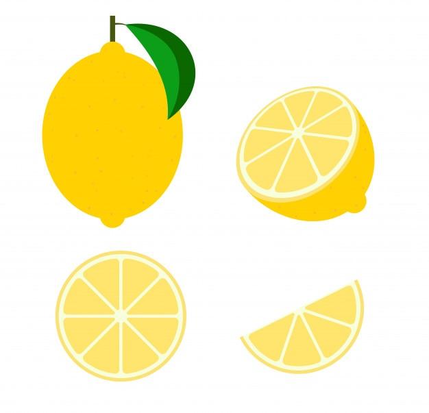 Vettore di frutta limone fresco
