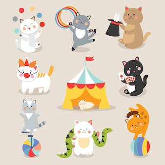 Vettore di gatti circo. set di allegri gatti del circo