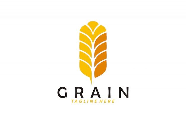 Vettore di logo del chicco di grano isolato