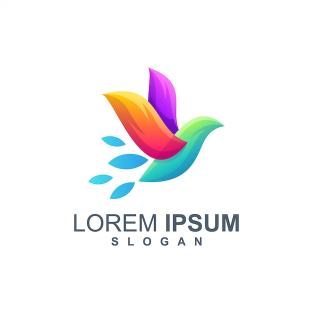 Vettore di progettazione di logo di colore dell'uccello