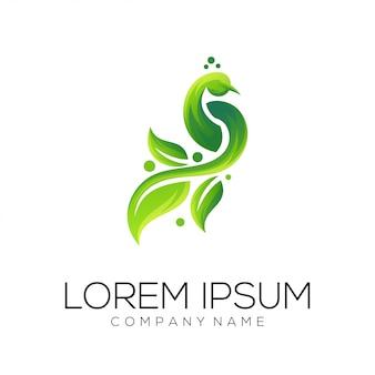 Vettore di progettazione di logo di foglia di pavone