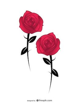 Vettore di rosa ai