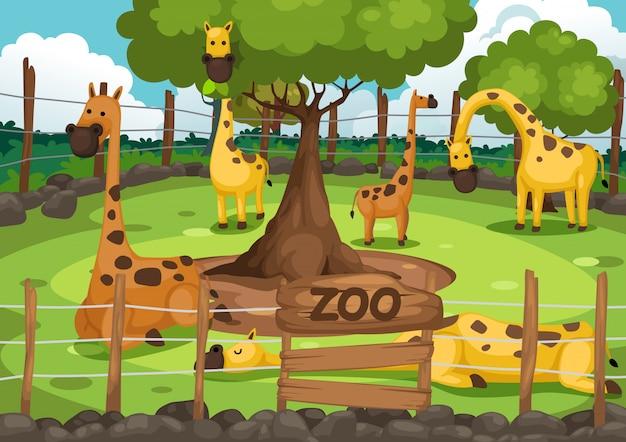 Vettore di zoo e giraffe