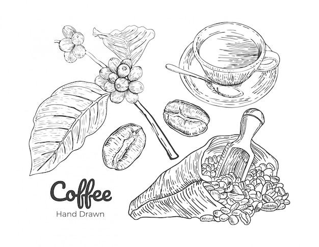 Vettore disegnato a mano del caffè