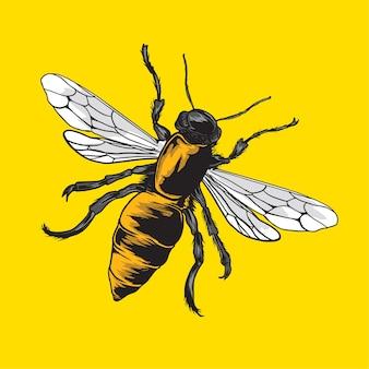 Vettore disegnato a mano dell'ape