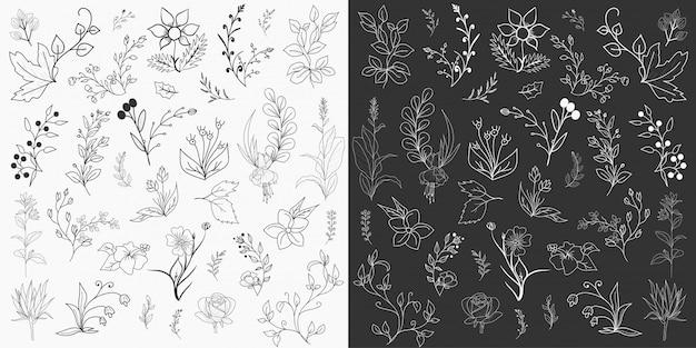Vettore disegnato a mano di progettazione degli elementi floreali