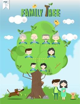 Vettore / illustrazione dei grafici di informazioni del modello dell'albero genealogico