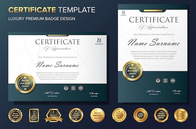 Vettore professionale del modello del bakcground del certificato professionale
