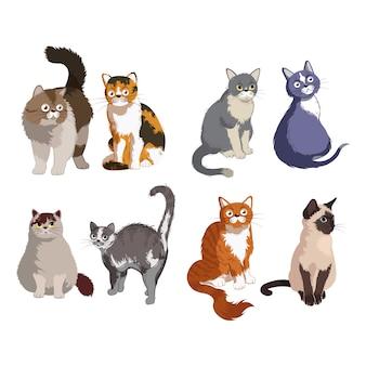 Vettore sveglio del modello del fumetto della raccolta dell'animale del gatto