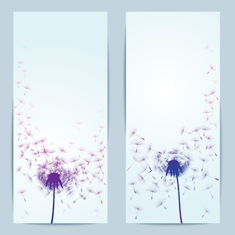 Vettore tarassaco fiore sfondo per banner