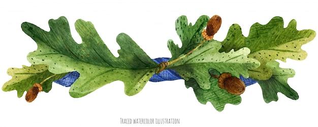 Vignetta da foglie di quercia con nastro di seta blu